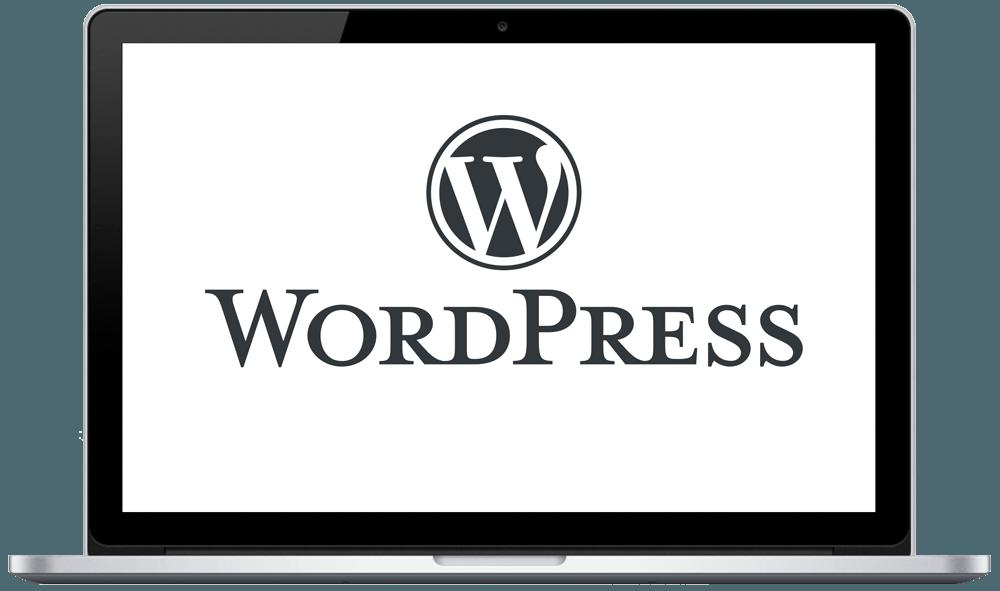 Websites auf Basis von Wordpress entwickeln